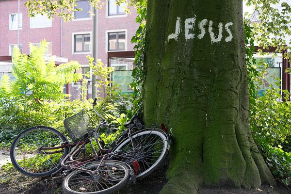 Jesus-Graffiti an einem Stadtbaum mit zwei umgekippten Fahrrädern