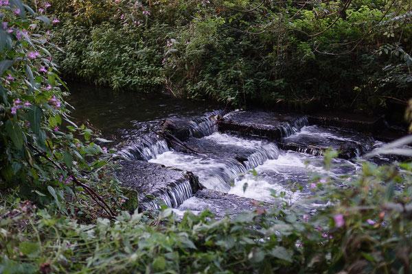 """""""Wasserfall"""" an der Stever."""