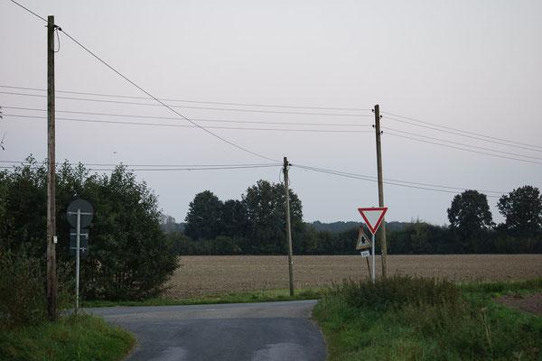 Straßenkreuzung mit Telefon- oder Stromdrähten im Münsterland.