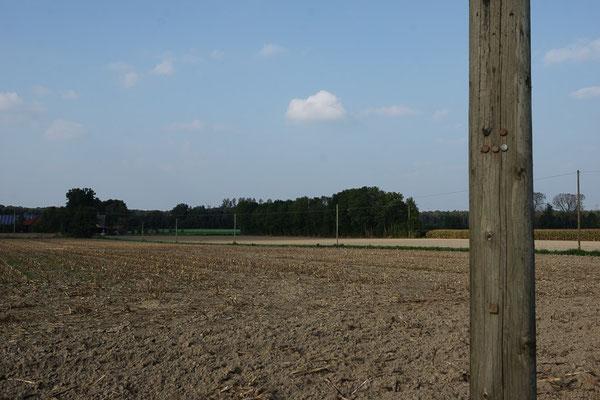 Agrarnutzung im Münsterland