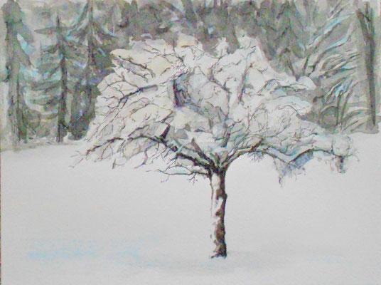 Apfelbaum im Winter, Aquarell, chin. Tusche, 2016, verkauft
