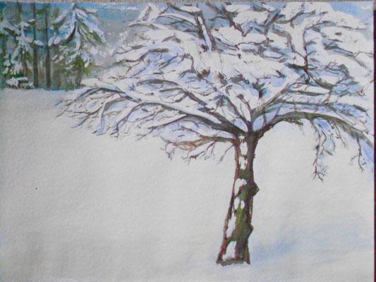 Apfelbaum im Winter, Aquarell und chin. Tusche, 2015, verkauft