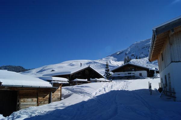 Brunnalm Kirchberg in Tirol