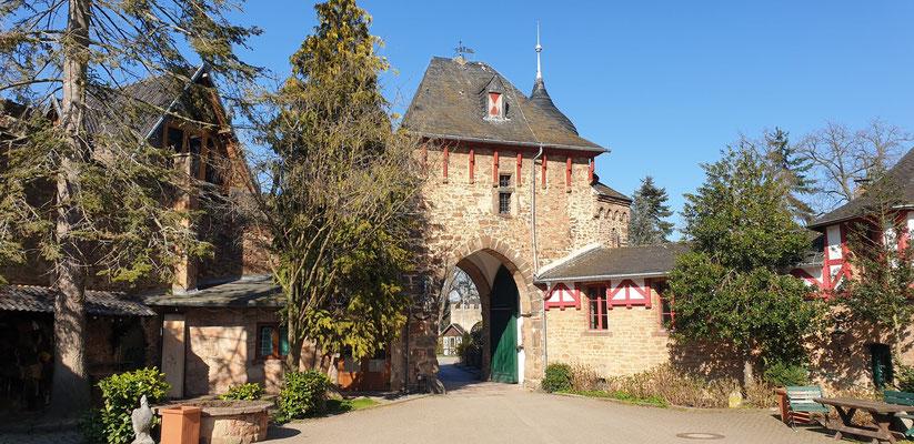 EifelSchleife - Burg Satzvey