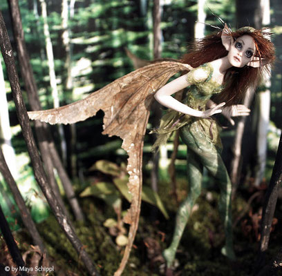 SHY FOREST FAIRY