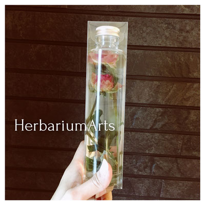 Herbarium Artsレッスン