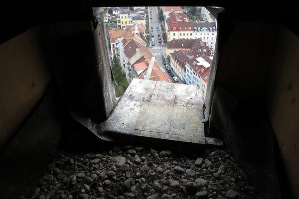 Falken-Nisthilfe im Turm der Herz-Jesu Kirche