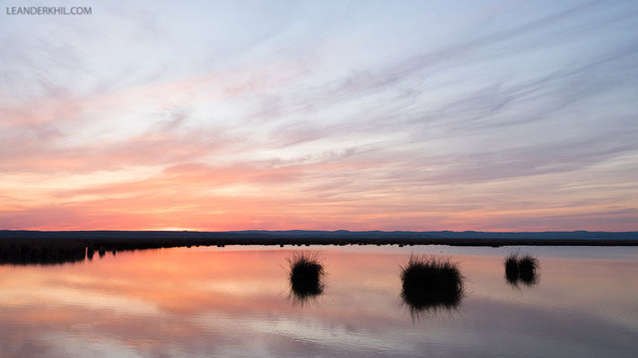 Sonnenuntergang am Neusiedler See / Sunset at Lake Neusiedl | Seewinkel, April 2016