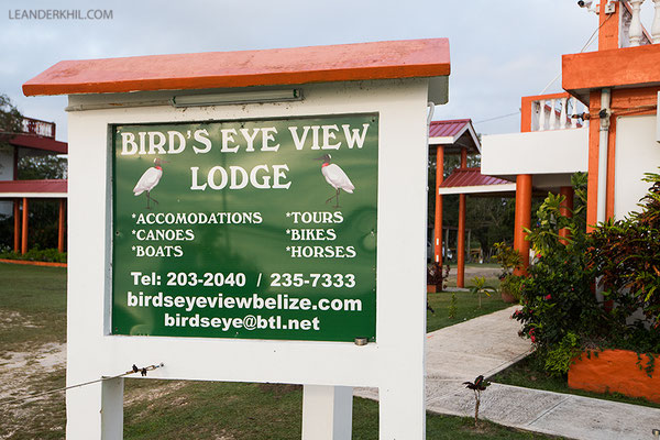Bird's Eye View Lodge, Crooked Tree Wildlife Sanctuary/Belize, February 2017