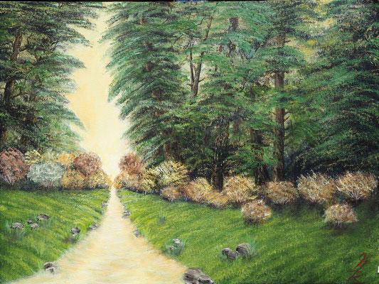 FOREST RIVER; 42x56 cm; Öl auf Malplatte; Preis € 150,-