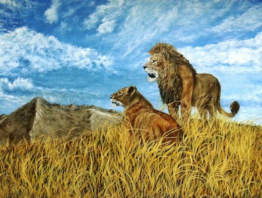 LIONS II; 42x56 cm; Acryl auf Leinen (Original nicht mehr erhältlich)