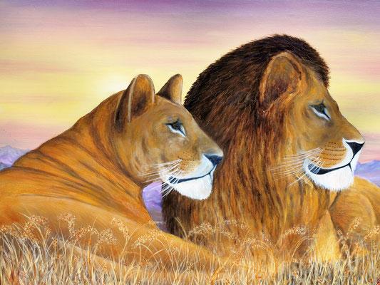 LIONS I; 60x80 cm; Öl auf Leinen (Original nicht mehr erhältlich)