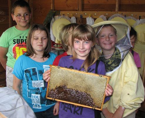 Volle Honigwaben, das ist eine gute Ernte.