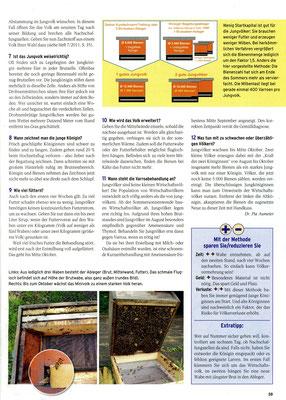 Ableger aus einer Brutwabe 2  (Bienenjournal)