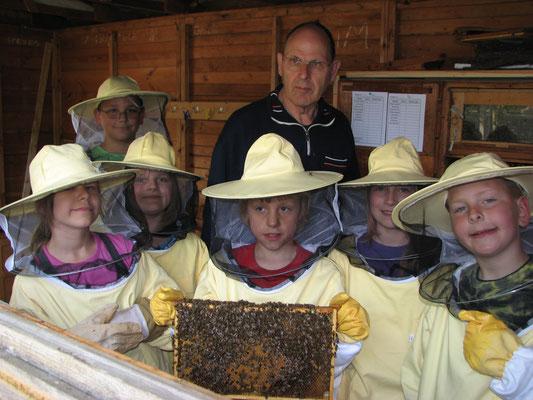 Sie tun nichts, es sind ja nur Bienen!