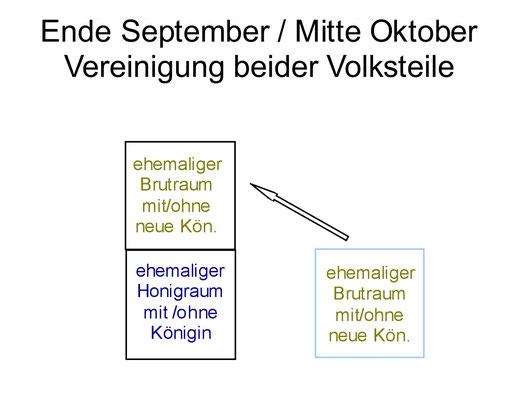 Schritt 2 etwa Mitte Oktober: Zusammenführung der beiden Volksteile