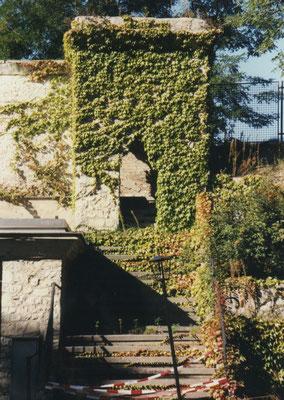 Der von Efeu umrankte Garagenüberbau war bereits seit den Achtziger Jahren wegen Baufälligkeit gesperrt.