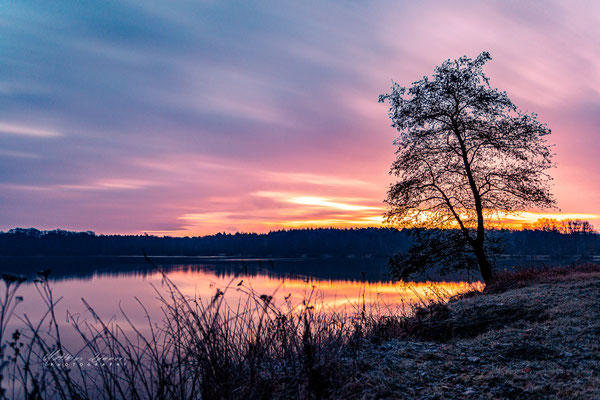 Sonnenaufgang am Haselünner See