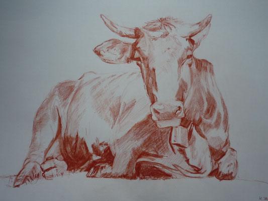 Liegende Kuh, 2012, Rötel