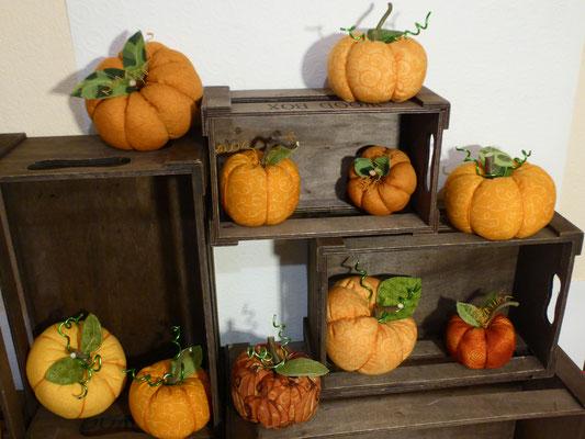 Kürbisse dürfen bei der Herbstdeko nicht fehlen, Preise  4,90€ - 7,50€.