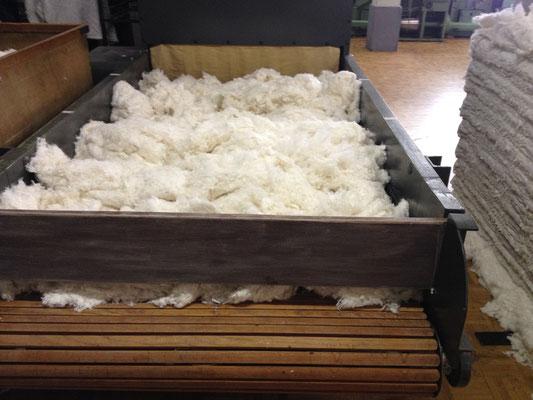 Maschine zum Reinigen der Fasern