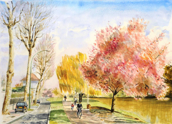 Bords de Marne - aquarelle - 50 x 40