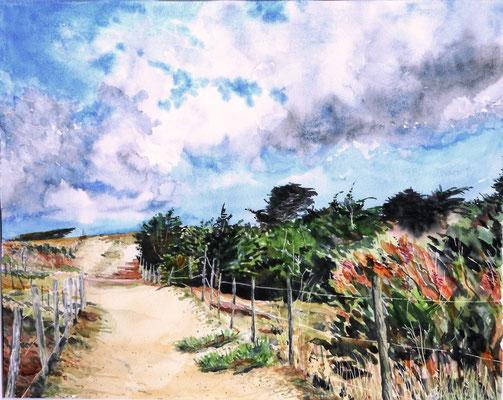 Le chemin de l'île de Ré - aquarelle - 63 x 53