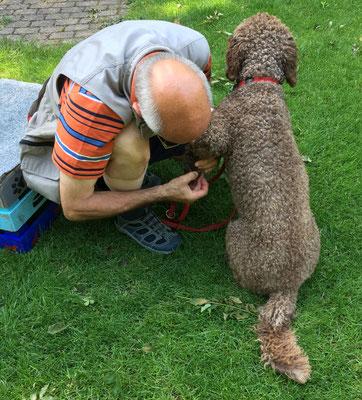 Rolf (Pfleger) und Trasto (geduldiger Patient): Diagnose Bienenstich