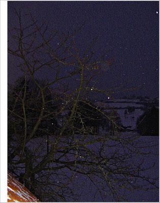 Kirschbaum Schnee Winter nervenkeks
