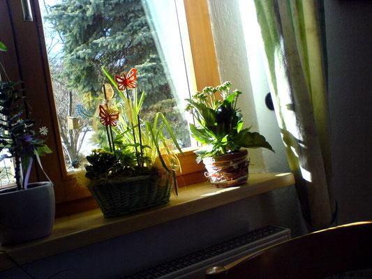 Zimmerpflanzen Deko Frühling nervenkeks