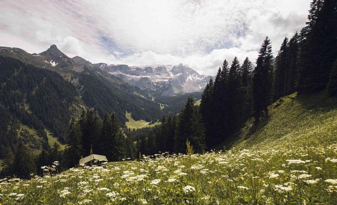 Alpen Panorama; Golm Montafon