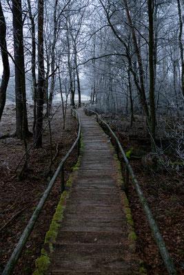 Eisiges Moor; Schofplocher Moor