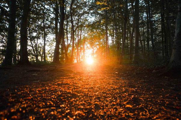 Goldener Pfad; Wanderweg um den Hohen Neuffen