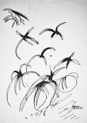 Zugvögel, 42x59cm, Tusche