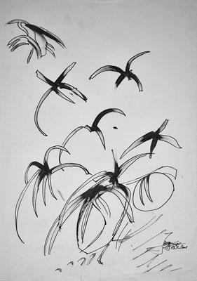 Zugvögel, 42x59 cm, Tusche auf Papier