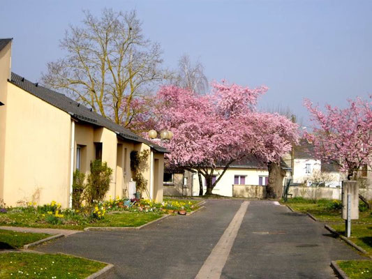 Autres photos des logements de la Résidence