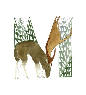 アニマルアルファベット「Moose」:水彩