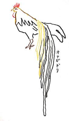 尾長鶏:カラーインク