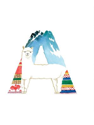 アニマルアルファベット「Alpaca」:水彩