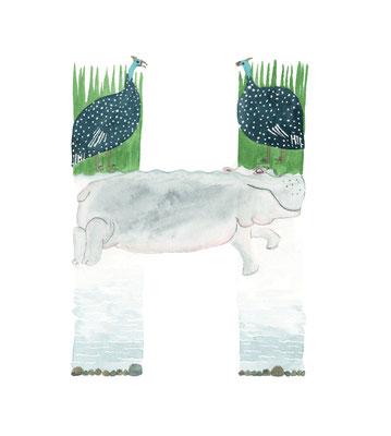 アニマルアルファベット「Hippopotamus」:水彩