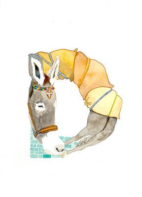 アニマルアルファベット「Donkey」:水彩