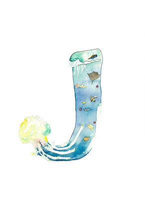 アニマルアルファベット「Jellyfish」:水彩