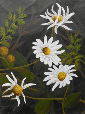 Daisies, acrylic on canvas