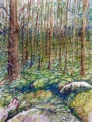 VA_6, watercolour on paper, 23x30,5 cm, 2020