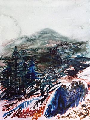 VA_14, watercolour on paper, 23x30,5 cm, 2020