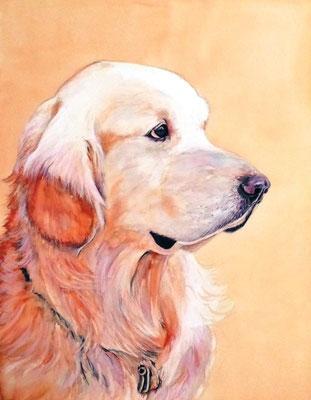 ペット 犬 A3 リアル