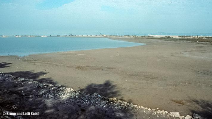 Neue Lagune | 1988
