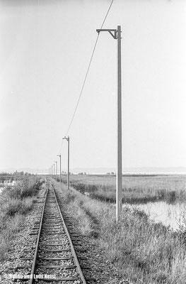 Hafen Hard | 1966