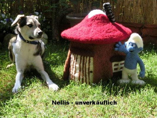 Nelli mit Ihrem Schlumpfhaus und Schlumpf.  (für Dog Dance-Choreo)