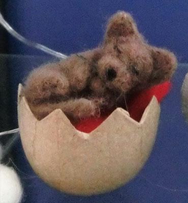 Kleiner schlafender Hund auf rotem Kissen im Ei